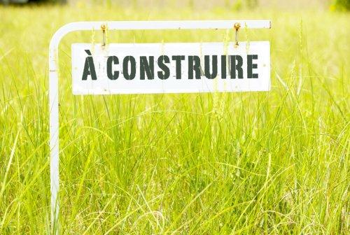 Loi psychothérapie: Arrêt de la Cour Constitutionnelle